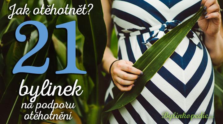 Jak otěhotnět? Bylinky na podporu otěhotnění