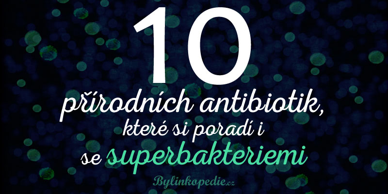 přírodní antibiotika