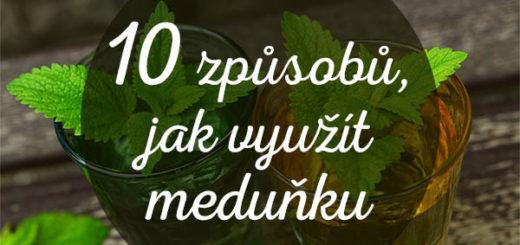 10-vyuziti-medunky-tn