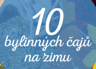 bylinné čaje na zimu