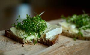 Řeřicha setá se sýrem na chlebu