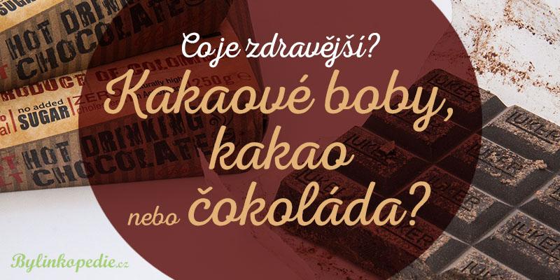 kakaové boby kakao čokoláda