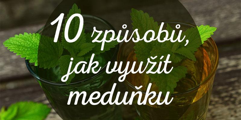 10 využití meduňky