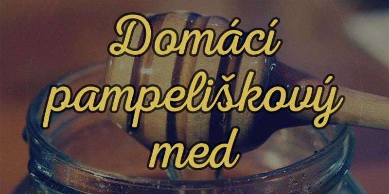domaci-pampeliskovy-med-hl