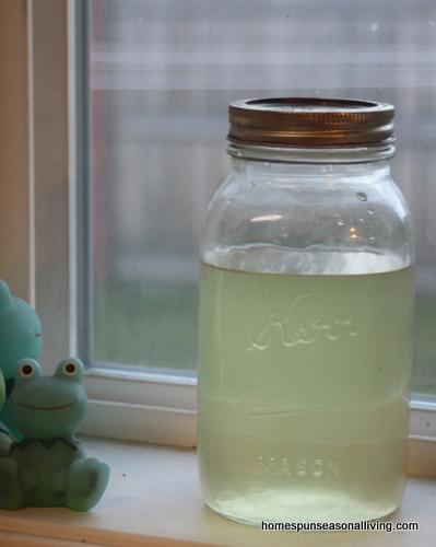 meduňkový likér