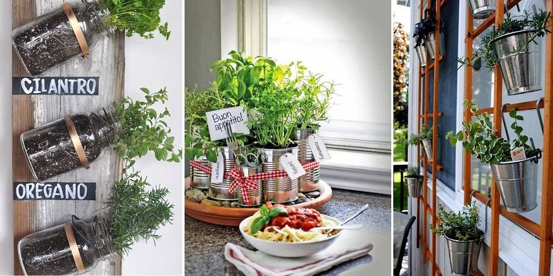 napady-na-bylinkove-zahradky-hl