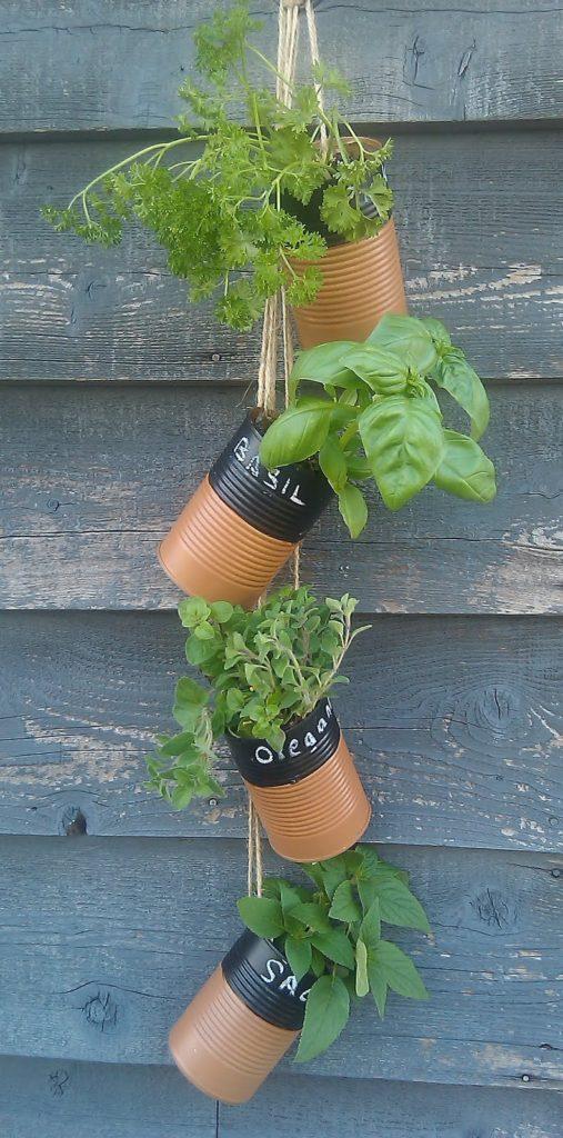 napady-na-bylinkove-zahradky11