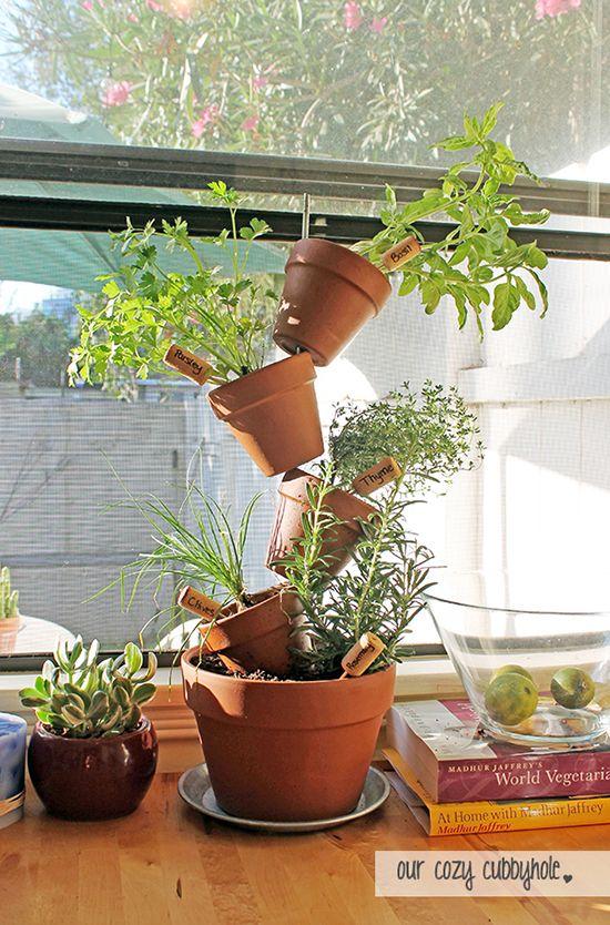 napady-na-bylinkove-zahradky12