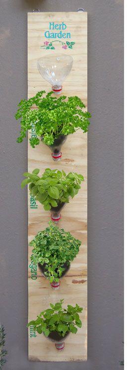 napady-na-bylinkove-zahradky14