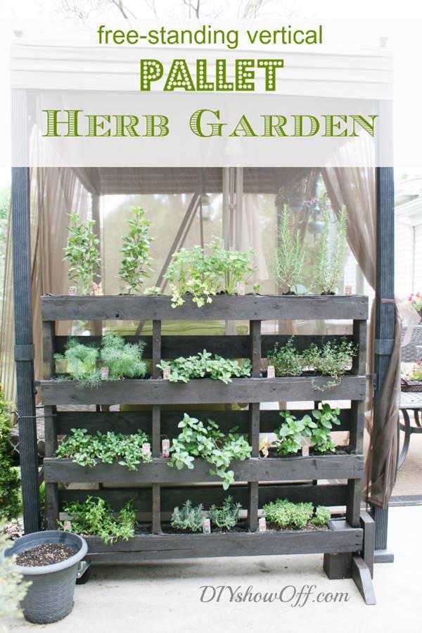 napady-na-bylinkove-zahradky3