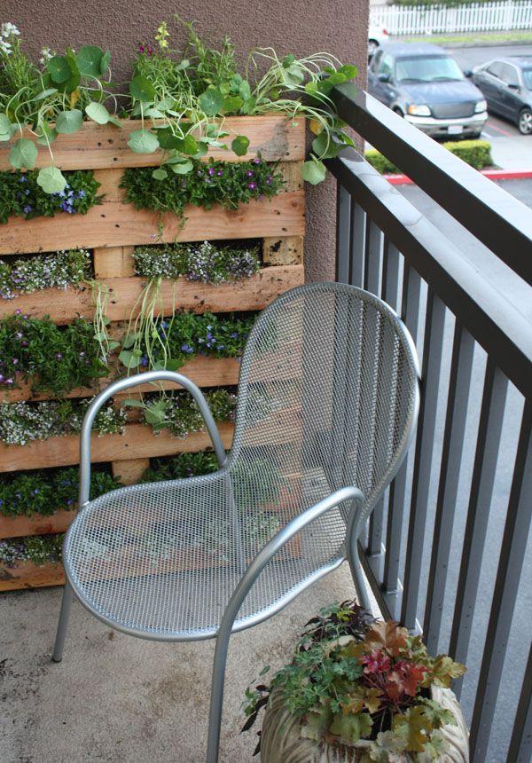 napady-na-bylinkove-zahradky5