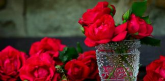 kvety-ruzi