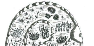 bylinková spirála