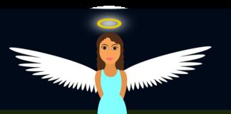 andělské bylinky