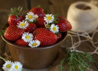 sedmikrasky a jahody