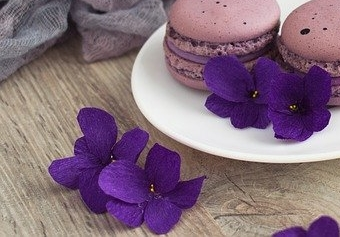 violka