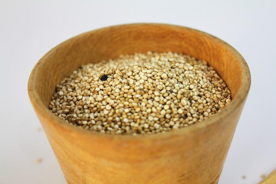 semena laskavec